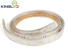 Đèn LED dây 2 hàng 2835 11W/m, cuộn 50m (79.000đ/m)