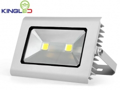Đèn pha LED 100W FL-KC100 (FL Series)
