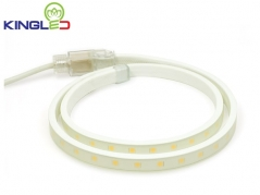 Đèn LED dây 5050 8w/m cuộn 50m (72.600đ/m)