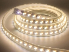 Đèn LED dây đổi màu 5730 220V mạch đôi (89.000đ/m, cuộn 50m)